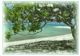 Wallis Et Futuna - Lot W17 - CPM Neuve ** - Unused Post Card - Wallis Nukuhione   - N° 11 - Wallis E Futuna