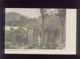 Peasant's Home St Thomas V.I. édit. Ino N. Lightbourn  , Couleur - Vierges (Iles), Amér.