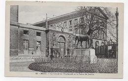 METZ - N° 48 - LE CHEVAL DE L' ESPLANADE ET LE PALAIS DE JUSTICE - CPA NON VOYAGEE - Metz