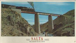 Salta - San Antonio De Los Cobres - Carte 18 X 10,5 - Argentina
