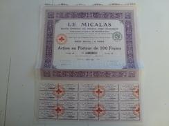 Action Le Micalas - Electricité & Gaz