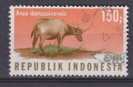 Indonesia Indonesie Nr. 1250 Used ; Koe, Cow , La Vache, Vaca, Rund 1985 NOW MANY STAMPS OF ANIMALS - Koeien