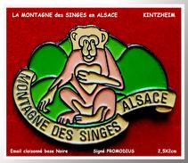 SUPER PIN´S LA MONTAGNE Des SINGES : En Alsace à KINTZEIM Parc De 200 Singes En Liberté. Email Cloisonné Base Noire - Villes
