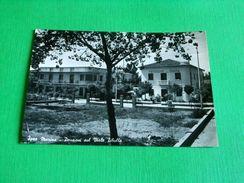 Cartolina Igea Marina - Pensioni Sul Viale Tibullo 1957 - Rimini