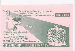SUPERPHOSPATE DE CHAUX  16 A18  POUR CENT   BLE D'HIVER - Agriculture