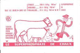 LE SUPERPHOSPATE DE CHAUX - Agriculture
