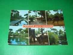 Cartolina Cervia - Parco Nazionale - Vedute Diverse 1985 - Ravenna