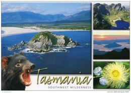 Tasmania  -  Southwest Wilderness Including Port Davey - Steve Parish Unused - Wilderness