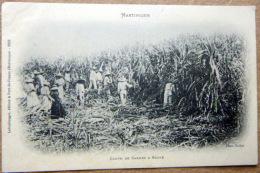 MARTINIQUE DOM TOM  COUPE DE CANNES A SUCRE  CARTE 1900 - Martinique