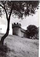 Photo Originale:  Bellinzona - Castello Di Montebello /~17 X 12 Cm / Ticino Tessin / Suisse / Schweiz / Swizzera - Luoghi