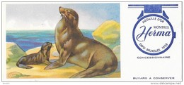 MONTRES HERMA   Médaille D'Or EXPO De Bruxelles 1958 - Carte Assorbenti