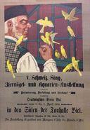 Sing- Ziervögel Und Aquarien Ausstellung Biel Schweiz 1909 - Postcard - Poster Reproduction - Publicité