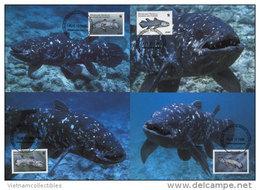 (WWF-239) Maxi Maximum Cards / Maxicard W.W.F. Comoros / Comoro / Comores Fish 1998 - Maximum Cards