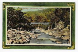 Darjeeling - Badamian Bridge - Nestor Gianaclis 2409 - India