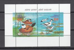 Turkey 2000,2V In Block,ducks,eenden,birds,vogels,vögel,oiseaux,pajaros,uccelli,aves,postfris(L3144) - Vogels