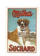 17024 - Plakat Suchard Milka Chien Grand St Bernard   Reproduction D'affiche (format 10X15) - Publicité