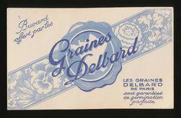 Buvard - Graines DELBARD - Buvards, Protège-cahiers Illustrés