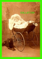 ENFANTS - JEUNE ENFANT DANS SON CAROSSE AVEC SON CHIEN LABRADOR -  NANNY'S CHARGE - PHOTOGRAPHIX UNLIMITED 1992 - - Portraits