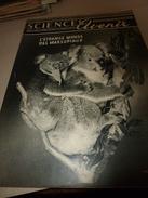 1953 SETA :Marsupiaux;Labo-FOUDRE;Chirurgie Cardiaque;Alimentation An-2000)Sites Préhistoriques-France;Hélico-Transport - Science
