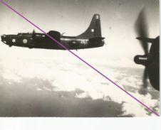 °°°  Avion   °°°    Militaria  °°° PHOTO °    °°  ( 500 °°° - Aviation