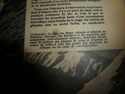 1954 SETA : Schiaorn (Suisse);Avions Kangourous;Origine-chien;Surprise-Brevets Invention;Industrie Atom;Radioteléscope; - Science