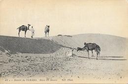 Désert Du Sahara - Dromadaires Et Méhari Dans Le Désert - Carte ND Phot. Non Circulée - Afrique