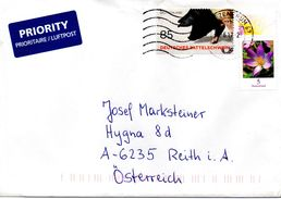 Ausland - Brief Von Briefzentrum 67 Mit 85 Cent Sattelschwein + 5 Cent 2017 - BRD