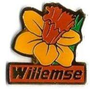 FLEURS - F8 - WILLEMSE - Verso : SM - Pin
