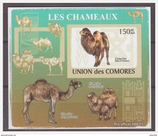 0197 Comores 2009 Kameel Camel S/S MNH Imperf - Timbres