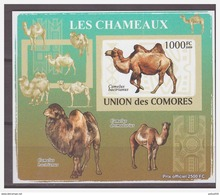 0199 Comores 2009 Kameel Camel S/S MNH Imperf - Timbres