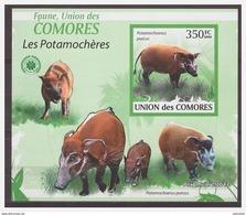 0108 Comores 2009 Wild Zwijn Pig Boar S/S MNH Imperf - Autres