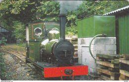 Isle Of Man - Steam Engines - No. 2 Sealion - Isle Of Man