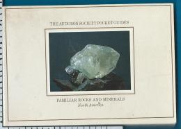 Rocks    Minerals   Pocket Guide   Steene    Mineralien - Livres, BD, Revues