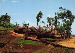 1978 Muguba - Gikongoro - Rwanda - Rwanda