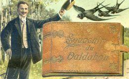 25 - Souvenir Du Valdahon - Carte A Systheme - Avec 4 Vues Dans L'album - Unclassified