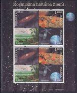 POLONIA 2004 Nº 3912/15 En 2 Bloques USADO (2series) - Blocks & Sheetlets & Panes