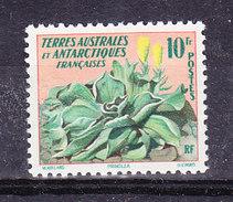 TAAF 1959 Definitive / Kerguelenkohl 1v ** Mnh (36350) - Franse Zuidelijke En Antarctische Gebieden (TAAF)