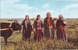 MONGOLIE / Beau Cliché Animé - Mongolie