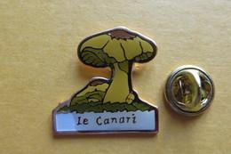 Pin's, Champignons, Le Canari - Badges