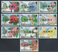 "Montserrat     ""Oficcial Stamps""    Set   SC# O10-19 Canceled - Montserrat"