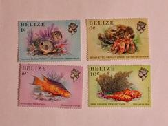 BELIZE  1984  LOT# 1  MARINE LIFE - Belize (1973-...)