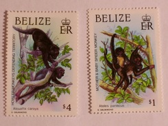 BELIZE  1987  LOT# 2  INDIGENOUS PRIMATES - Belize (1973-...)
