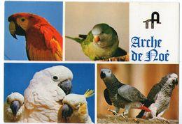 CPM      ARCHE DE NOE      ANIMALIUM ZOO        PERROQUETS PERRUCHES - Animals
