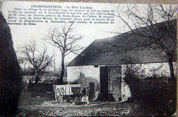 53 LE PETIT COUDRAY  MORT DE JACQUES BURIN VENDEE CHOUNNERIE CONTRE REVOLUTION RELIGION - France