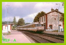 107 Amis Du Rail Du Forez Loire Nord Gare De Noirétable - Estaciones Con Trenes