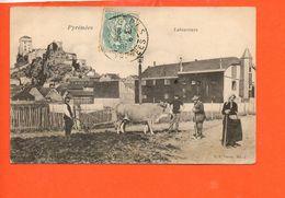 Agriculture - Laboureurs - Pyrénées - Agriculture