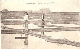 56 CARNAC  PLAGE    MARAIS  SALANTS  DU  BRENO - Carnac