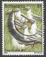 Botswana. 1982 Birds. 5t Used SG 519 - Botswana (1966-...)