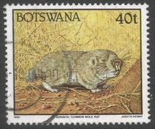 Botswana. 1992 Animals. 40t Used SG 748 - Botswana (1966-...)
