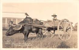 PHILIPPINES - Ethnic N / Photo Card - Chinese Truck Farmer - Philippines